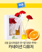 0418_	카네이션 디퓨저_today banner_1_/deal/adeal/241244