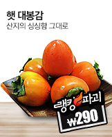 시크릿데이_today banner_3_/deal/adeal/371643
