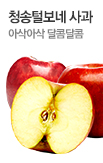 청송 털보네사과 9kg~11kg 무료배송_rightevent banner bottom_3_/deal/adeal/402679