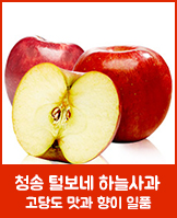 청송 털보네사과_today banner_1_/deal/adeal/444637