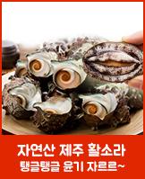자연산 제주 꼬들꼬들 참소라_today banner_4_/deal/adeal/459656