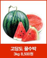 [싸다딜]비파괴선별 광일 꿀수박3kg_today banner_5_/deal/adeal/517819