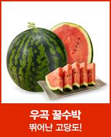 수박의자존심 정품 우곡 꿀수박3.5kg_today banner_3_/deal/adeal/532558