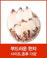 한치_today banner_6_/deal/adeal/581254