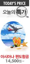 아시아나 편도 항공권