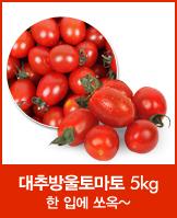 [원더픽]장보남 대추방울토마토 5kg_today banner_1_/deal/adeal/606112