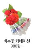 비누꽃카네이션 980원~