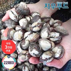 [22데이] 남해안 새꼬막 3kg