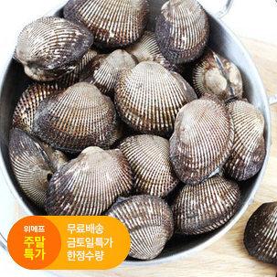 [주말특가] 남해 피꼬막 3kg 특가!