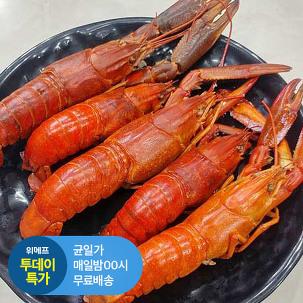 [투데이특가] 싱싱한 크레이피쉬1kg