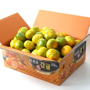 [무료배송] 꿀당도 제주 감귤 10kg