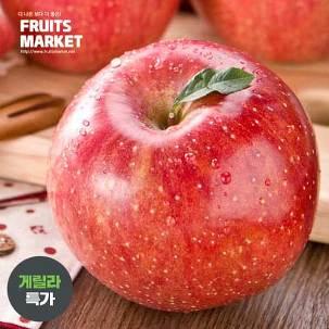 [게릴라특가] 맛있는 부사 사과7kg