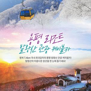 용평리조트 발왕산 케이블카 왕복권