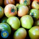 [투데이특가] 대저<br/>토마토 1.3kg특가_best banner_12__/deal/adeal/1852366
