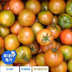 [투데이특가] 대저 토마토 3kg 랜덤
