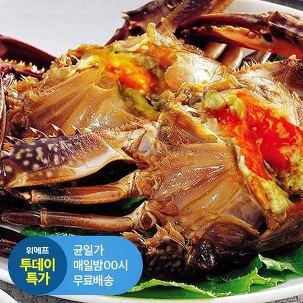 [투데이특가] 간장게장 꽃게장 1.7kg