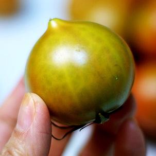 [반값특가] 대저 토마토 2kg/4kg