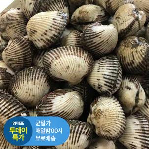 [투데이특가] 벌교 새 꼬막 3kg