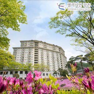 [강원] 엘리시안강촌, 주변관광 PKG