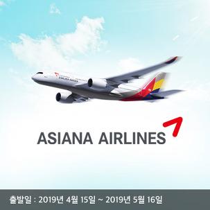 [7%할인] 아시아나 제주실시간항공권
