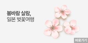 [기획전] 일본 벚꽃