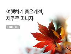 [기획전] 제주도 가을연휴