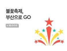 [기획전] 불꽃축제, 부산으로 GO!
