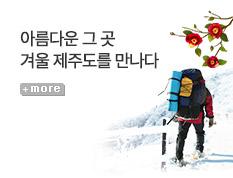 [기획전] 겨울 제주도