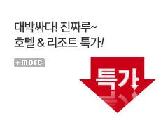 [기획전] MD추천특가딜