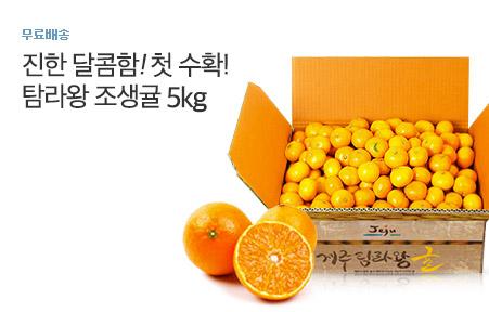 [today_pick6][올패스]탐라왕 조생감귤 5kg 로얄과