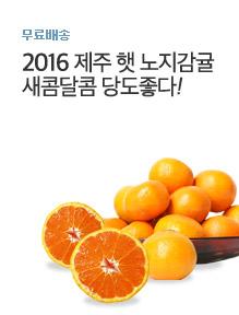 [today_pick5]서귀포 노지감귤 10kg+10kg / 총20kg