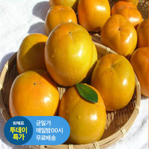 [투데이특가] 단감 5kg (40~45과)