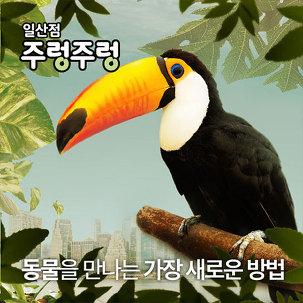 [쿠폰★] 일산 주렁주렁 실내동물원