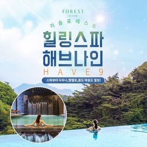[쿠폰할인] 제천 리솜 해브나인~2/29