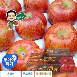 [투데이특가] 털보네 사과 5kg 특가