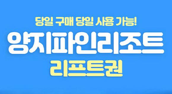 [용인] 양지파인리조트 스키 리프트