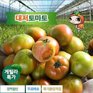 [게릴라특가] 대저 찰 토마토 3.5kg
