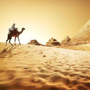 이집트일주 10일,크루즈 탑승!