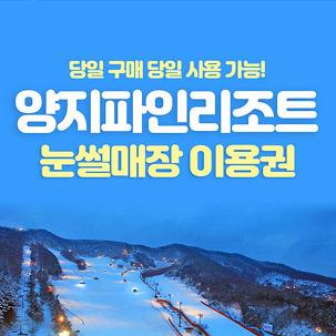 [용인] 양지파인리조트 눈썰매장!