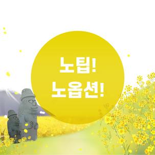 [전국出] 제주PKG 노팁,노옵션3일