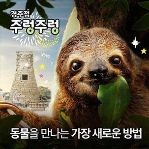 [★쿠폰] 경주 주렁주렁 실내동물원