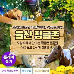 [플레이특가] 실내동물원 정글존