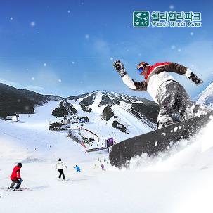 [특정대상] 강원 웰리힐리, 스키PKG
