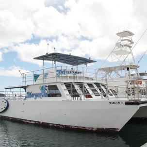 [10%쿠폰] 괌 돌핀크루즈 후기대박!