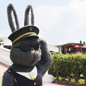 [제주] 이스타항공 자유여행or패키지