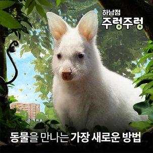 [★쿠폰할인] 주렁주렁 하남점