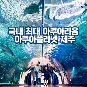 [★10%] 제주아쿠아플라넷+커피 ~3월